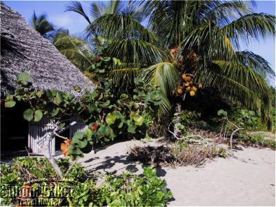 Kamalame Cay, Andros Island Bahamas