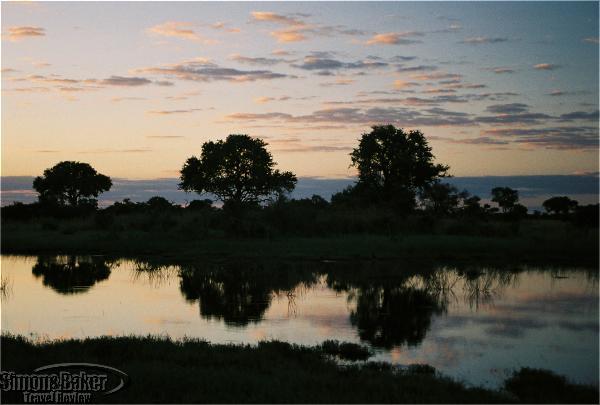 Lebala – Kwando Safaris
