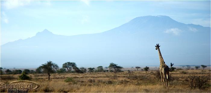 Amboseli Porini Camp